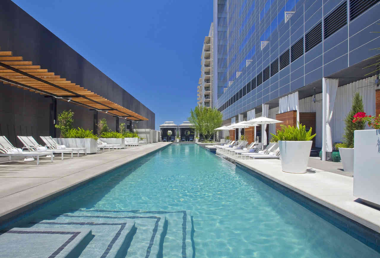 THE WET DECK AT W AUSTIN |  MARK KNIGHT