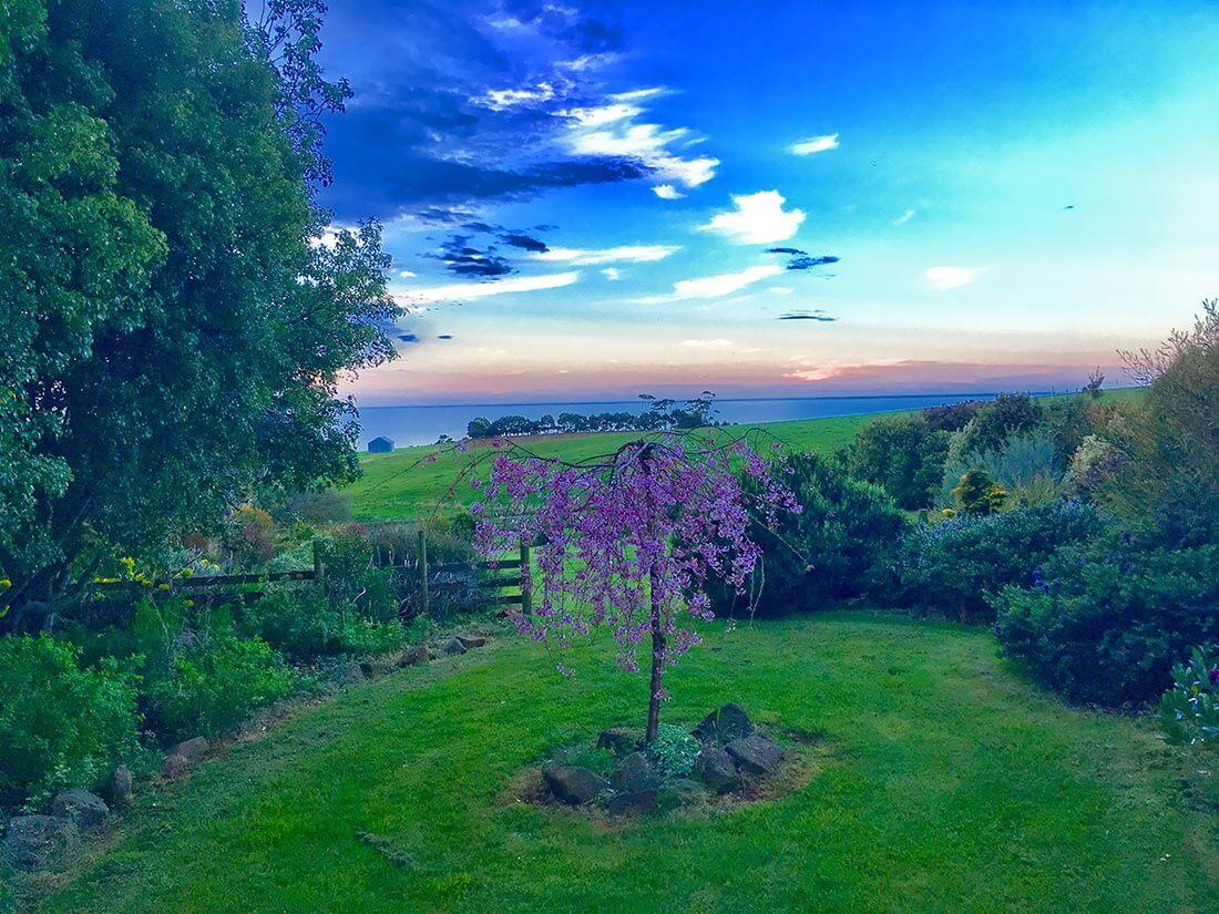 Killy-Garden-Sunset.jpg
