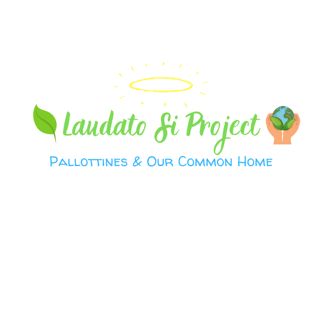 Website_LaudatoSiProject_Logo (1).png