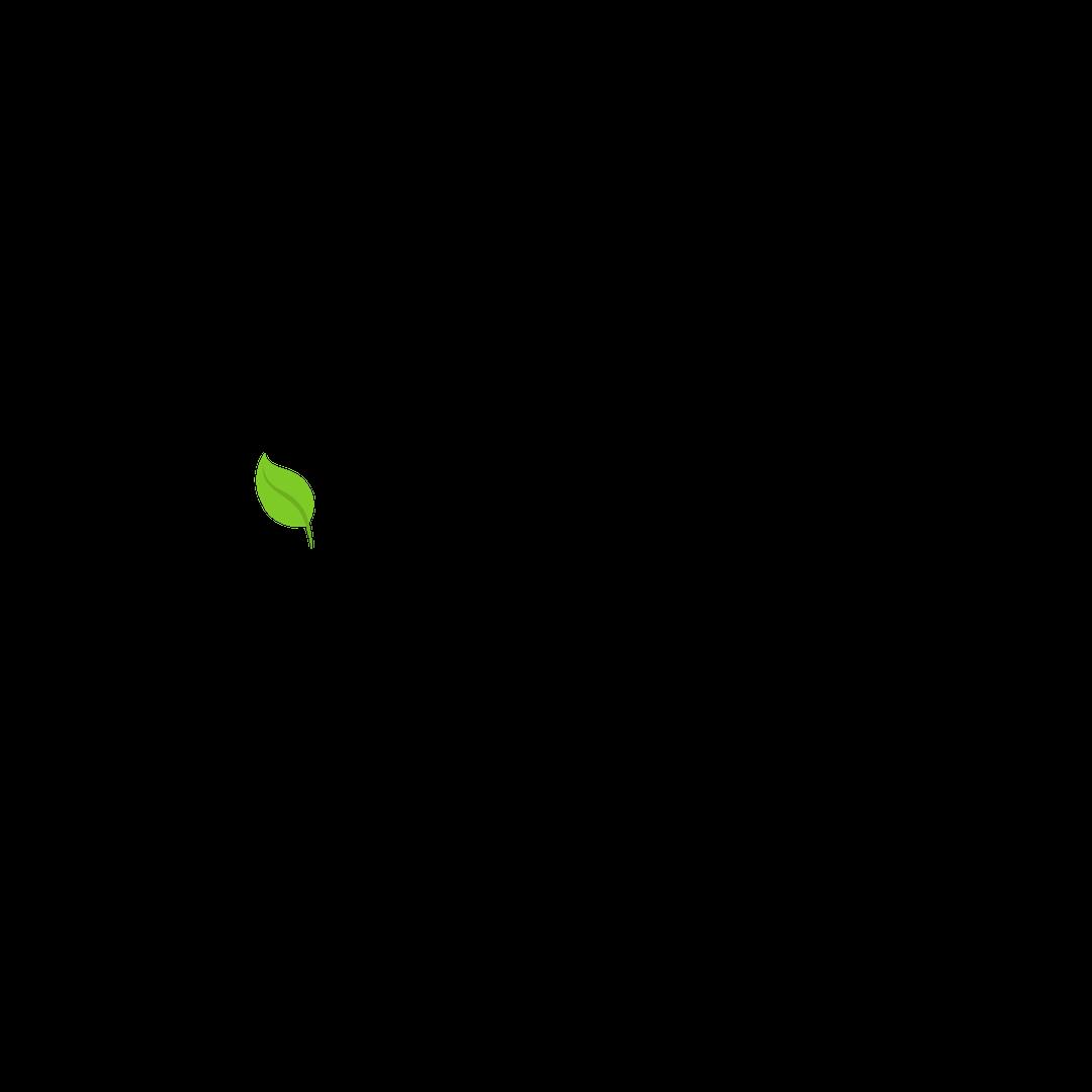 PapasAnswer_LaudatoSiProject_Logo.png