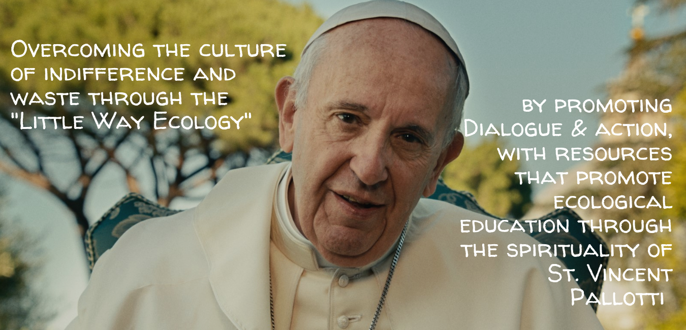 PopeFrancisAppeal (2).png