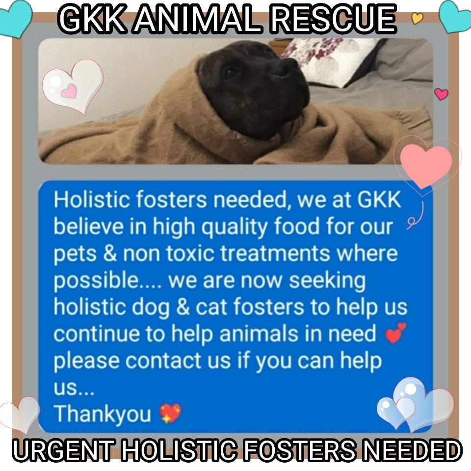 GKK Animal Rescue & Animal Rights