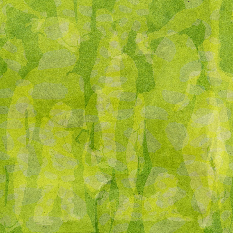 green square4.jpg
