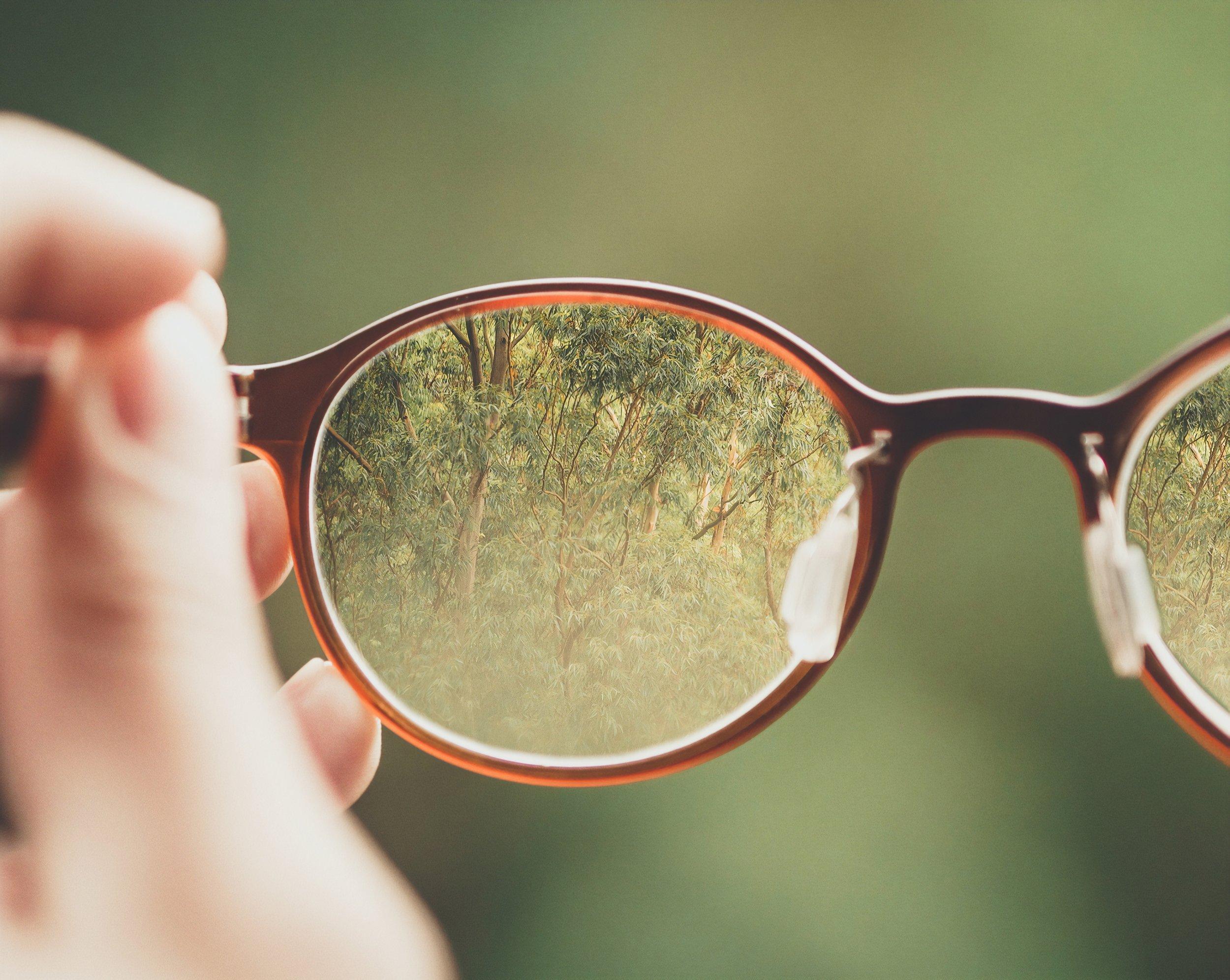 glasses -bud-helisson-465328-unsplash.jpg