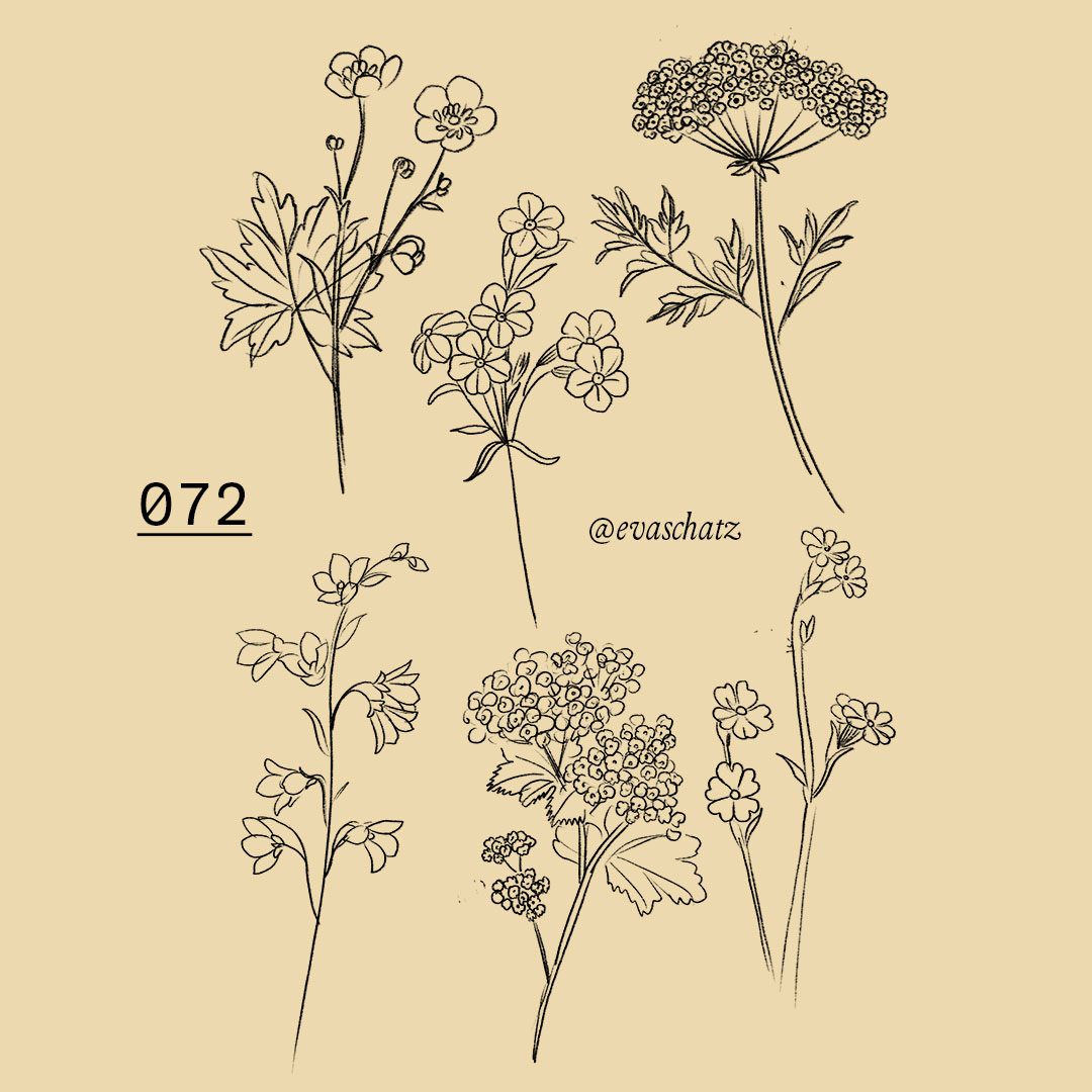 Copy of Field Flower, Wiesen Blumen Tattoo, Eva Schatz, MINT CLUB Tattoo Salzburg