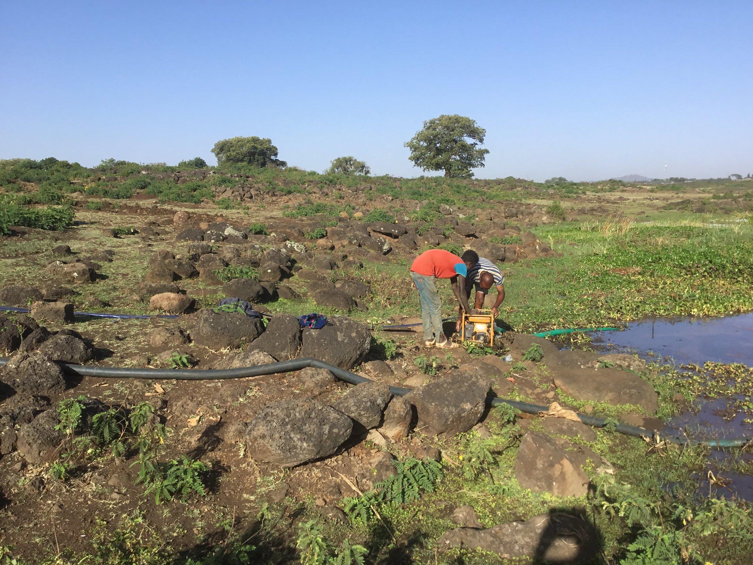 Water Source at Sebatamit