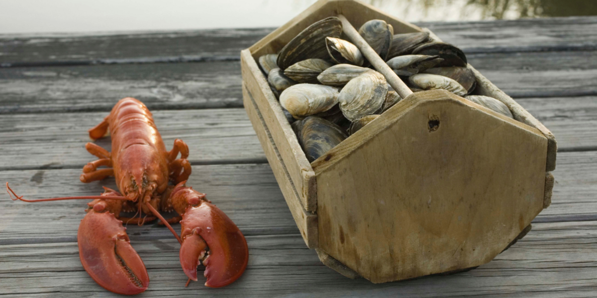 Clambake Header Only.png
