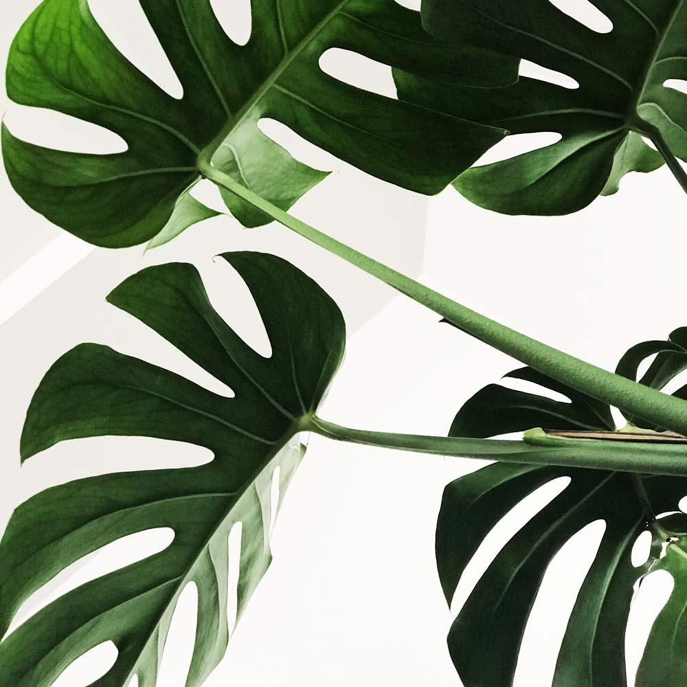 7-tipps-fuer-mehr-nachhaltigkeit-im-buero-lendis-vorschaubild.jpg