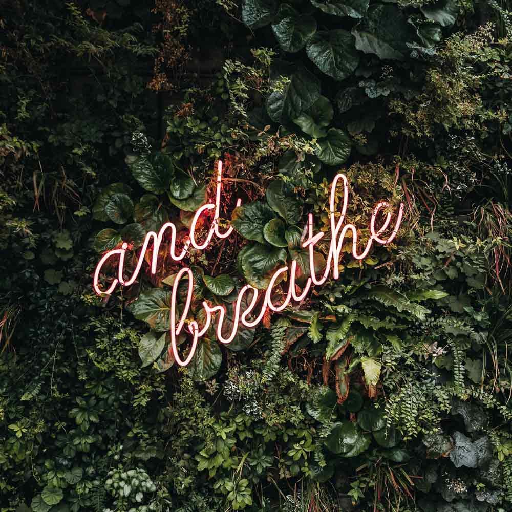 """Einfach ausprobieren - Nicht umsonst heißt es """"Wer rastet, der rostet"""". Beim Meditieren dürfen Sie sogar mal rasten und tun sich dabei gleichzeitig etwas Gutes.Probieren Sie zusammen mit Kollegen und Kolleginnen auf der Arbeit aus, ob sich die Meditation – oder cool ausgedrückt """"die Achtsamkeitspause"""" – positiv auf Gemüt und Brainpower auswirkt."""