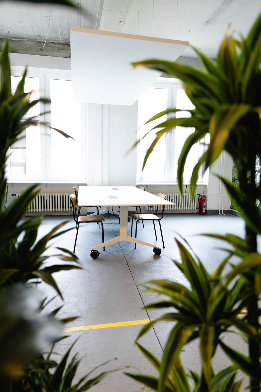 Pflanzen  lockern das industrielle Flair des Gebäudes auf