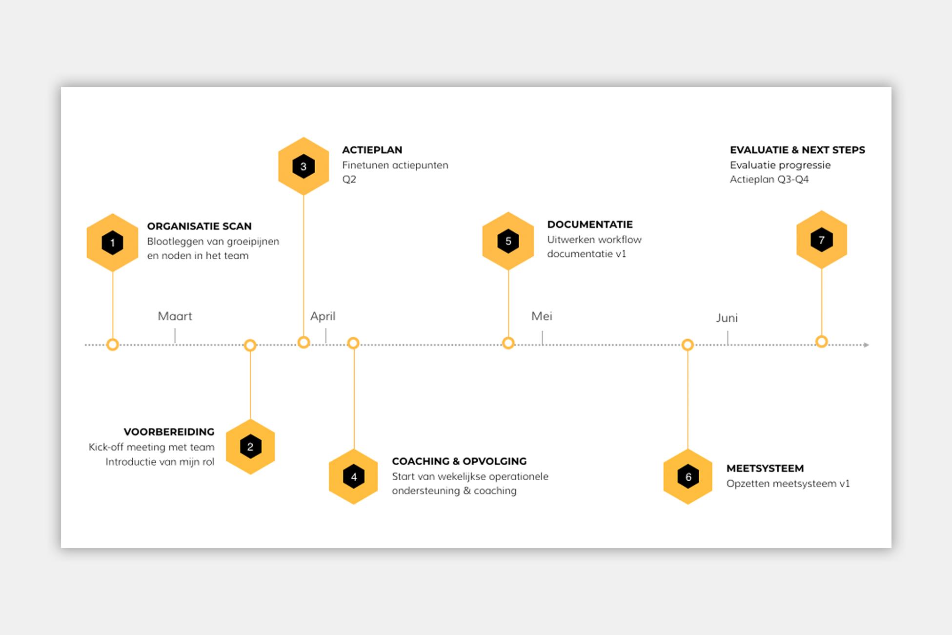 Programma Roadmap Voorbeeld