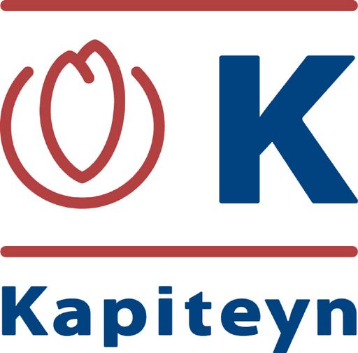 Kapiteyn logo 2.png