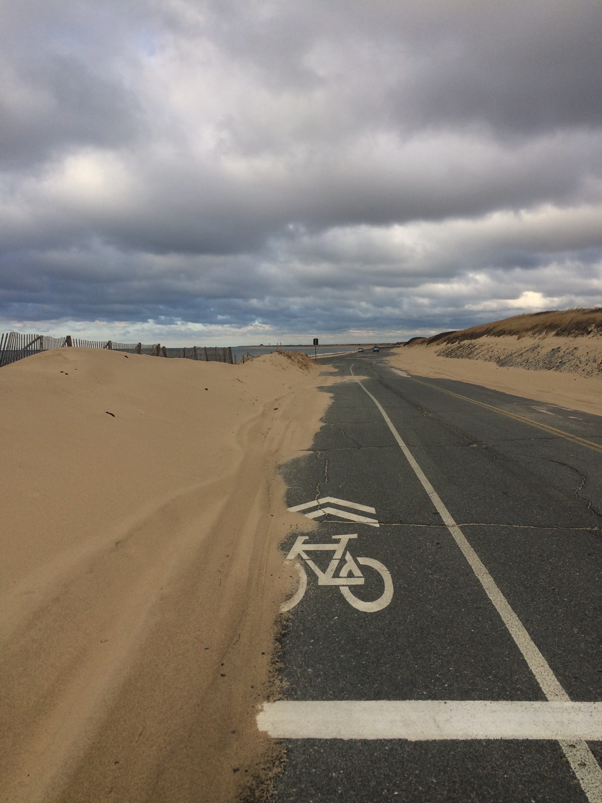 A sharrow covered in sand on the road at Herring Cove in the Cape Cod National Seashore, Provincetown
