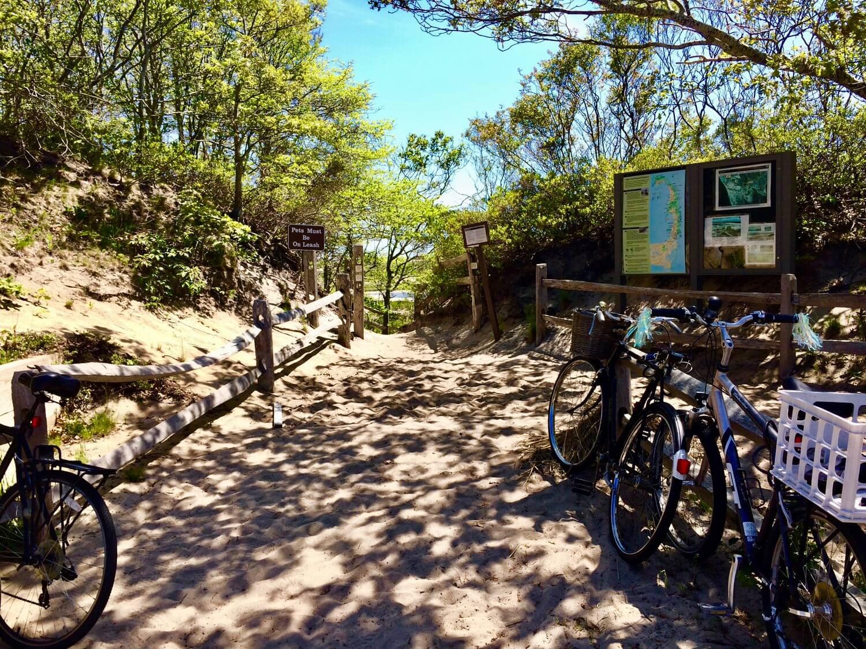 Seashore Bike Adventure - Boy Beach Entrance at Herring Cove beach in Provincetown - Pedal Ptown Bike Tours.jpg