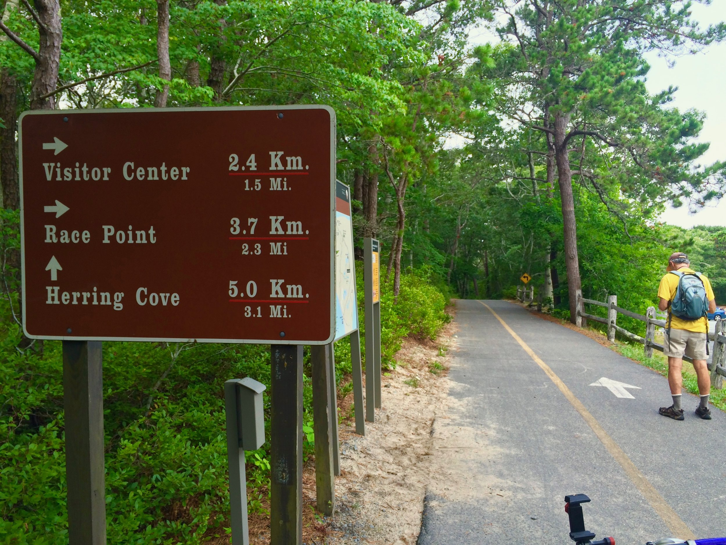 Wayfinding sign at Beech Forest