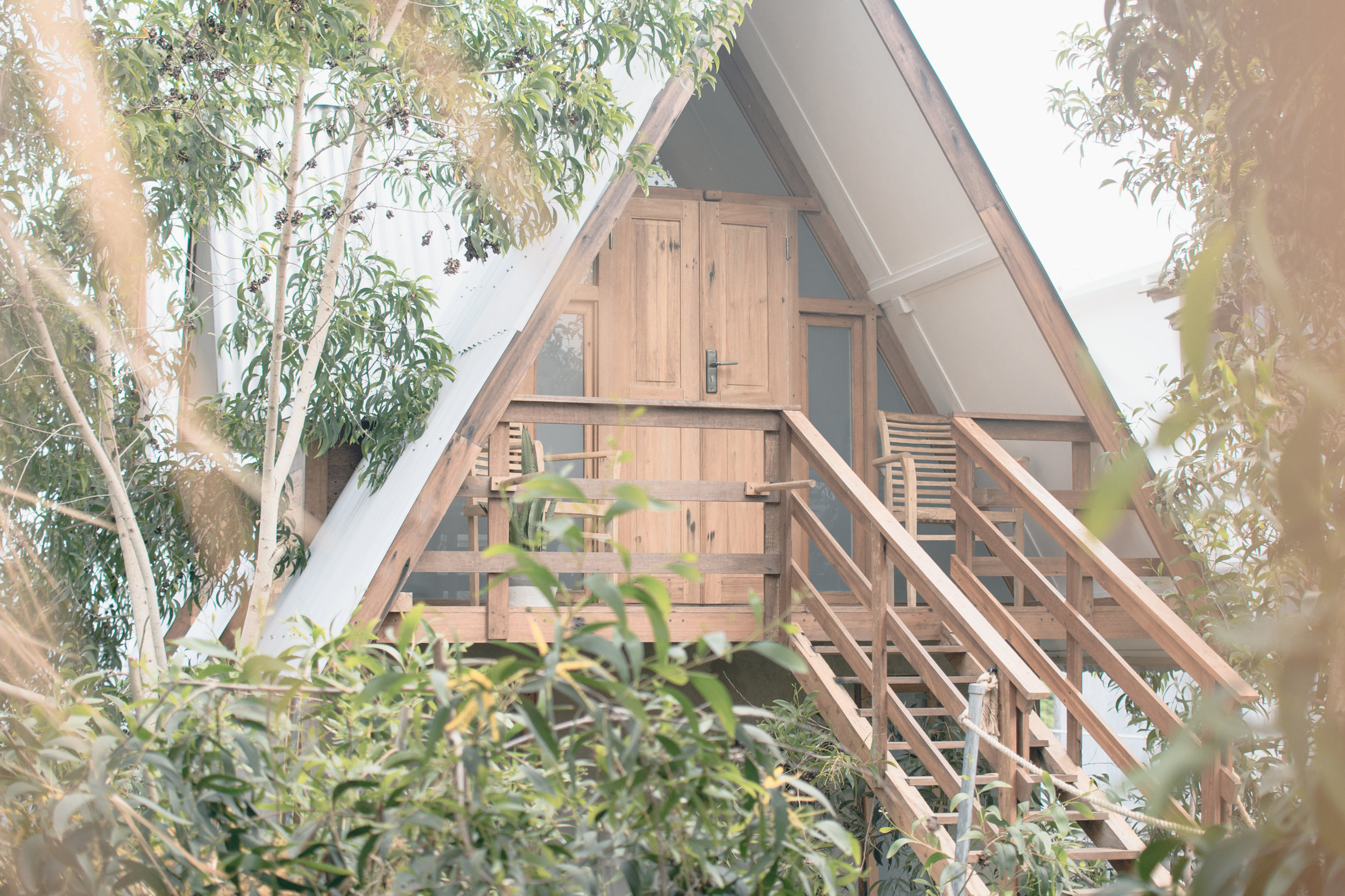 The Tree House -