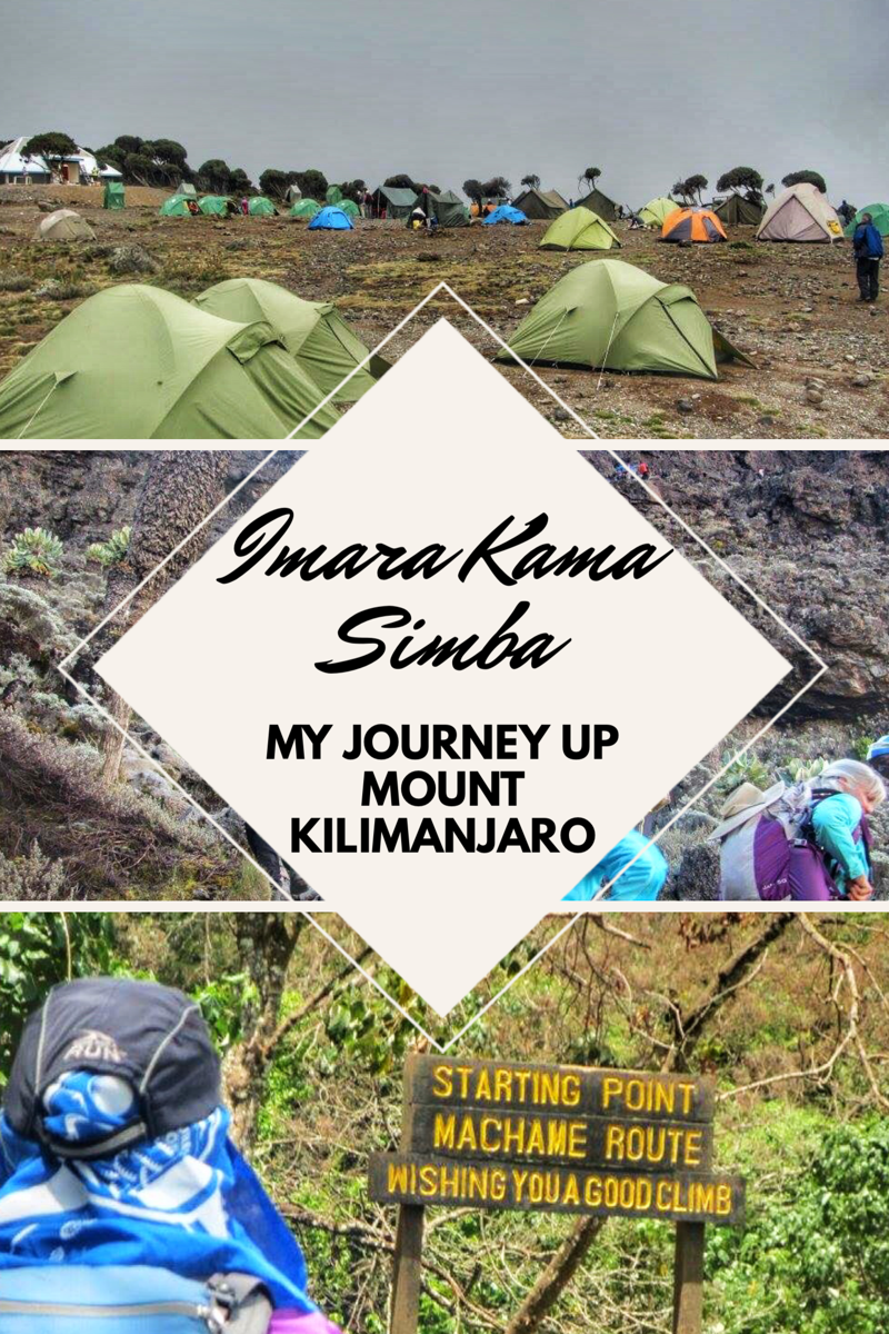 Imara Kama Simba: My Journey up Mount Kilimanjaro