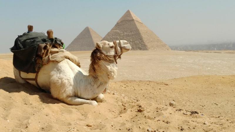 Visit Egyptian Pyramids