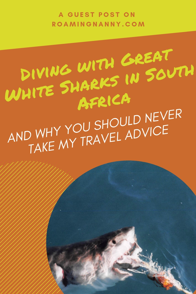 Diving with Great White Sharks in South Africa is a thrill of a lifetime! But the real story happens afterwards. #southafrica #greatwhitesharks #cagediving #traveladvice