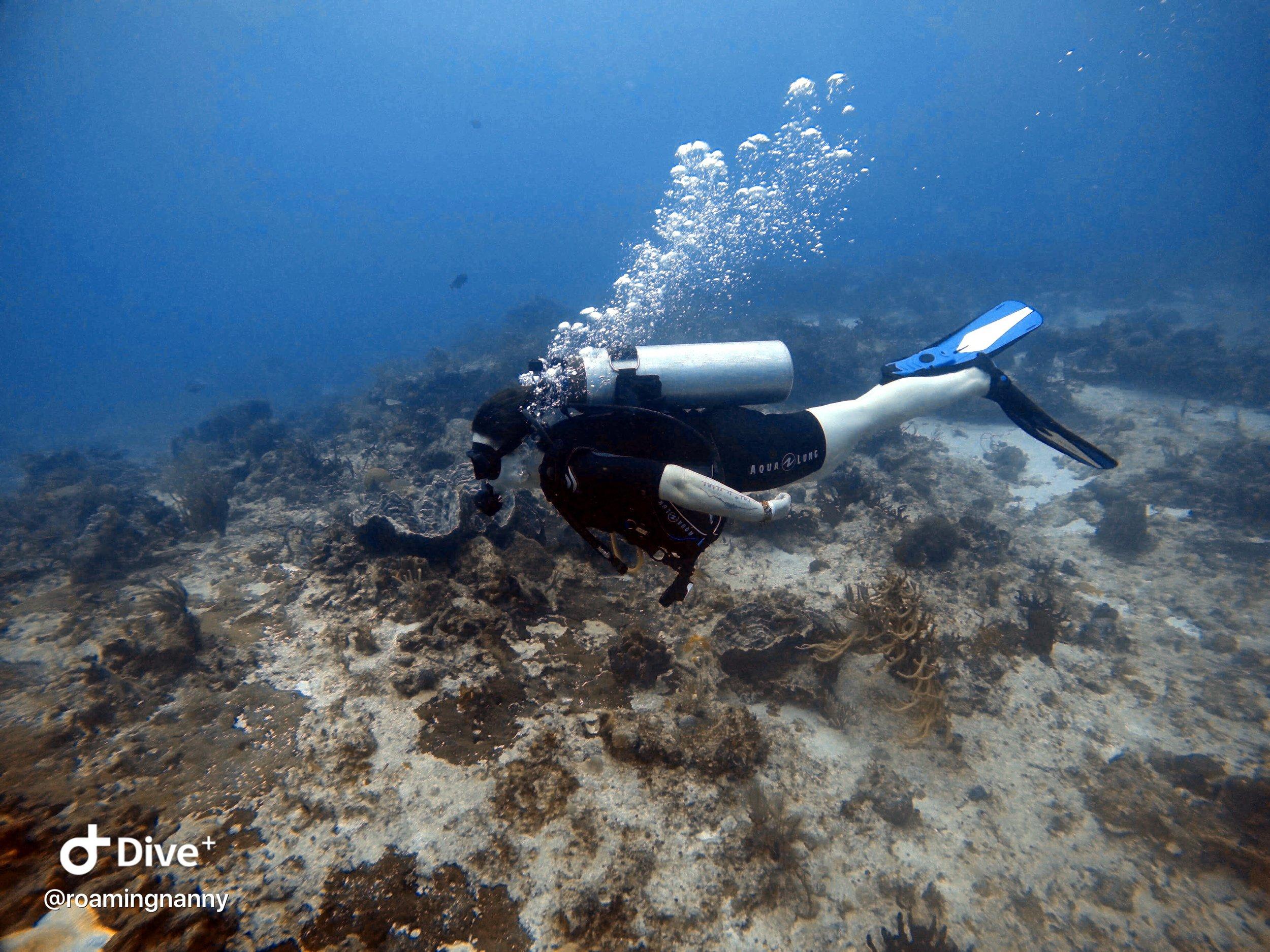 Women Scuba Diving PADI