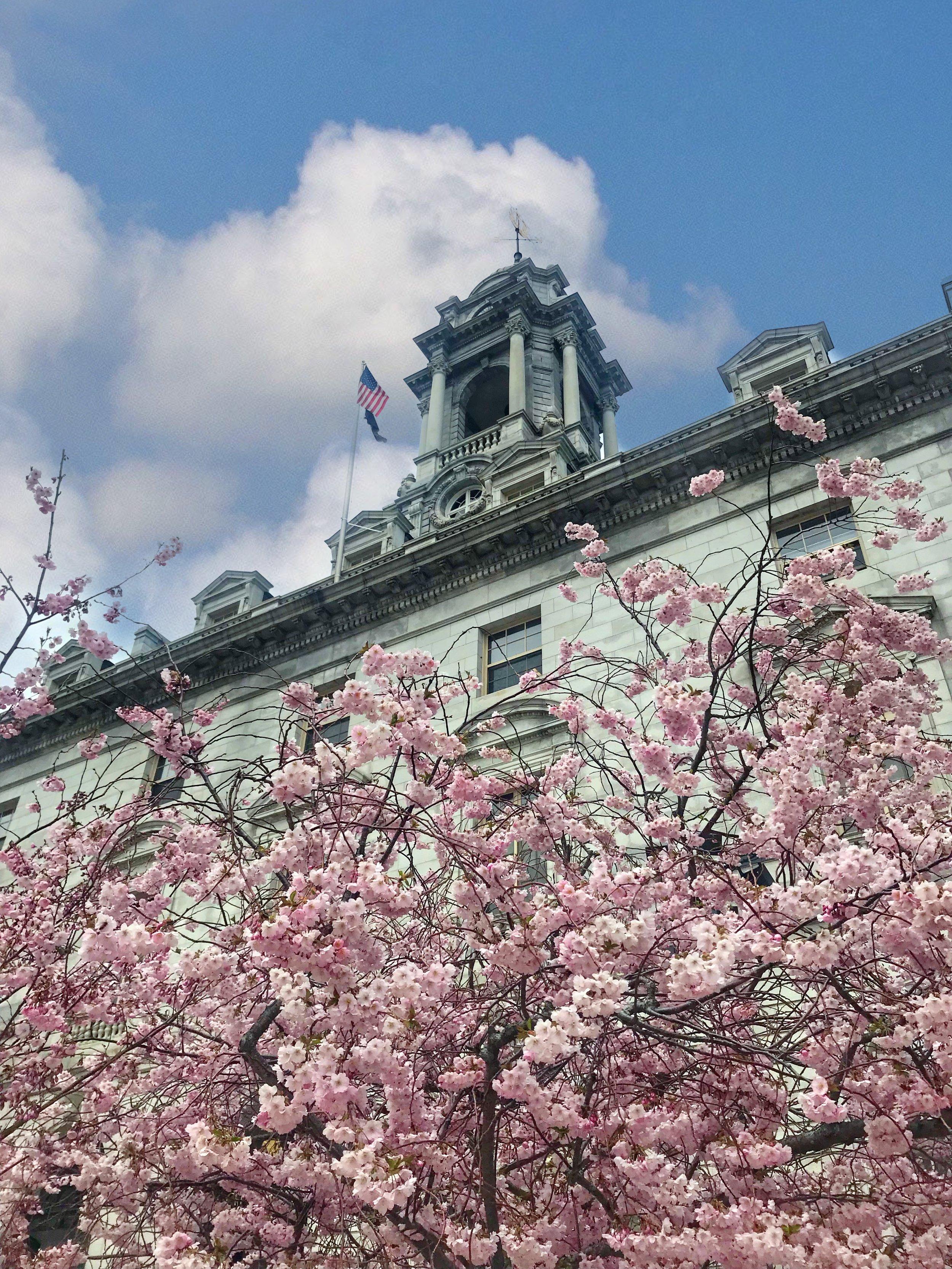 Visit Portland Maine City Hall