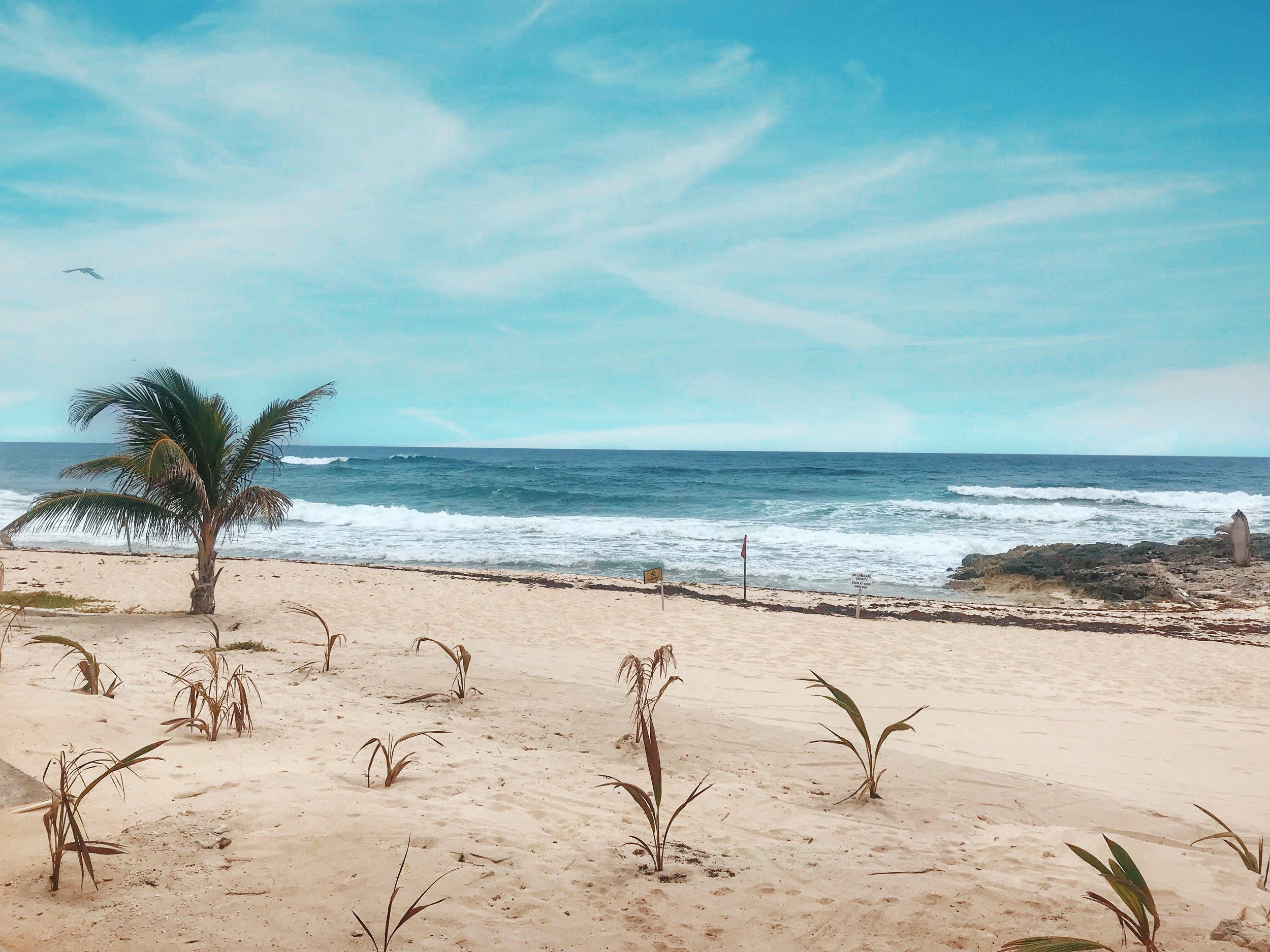 East Coast of Cozumel Mexico