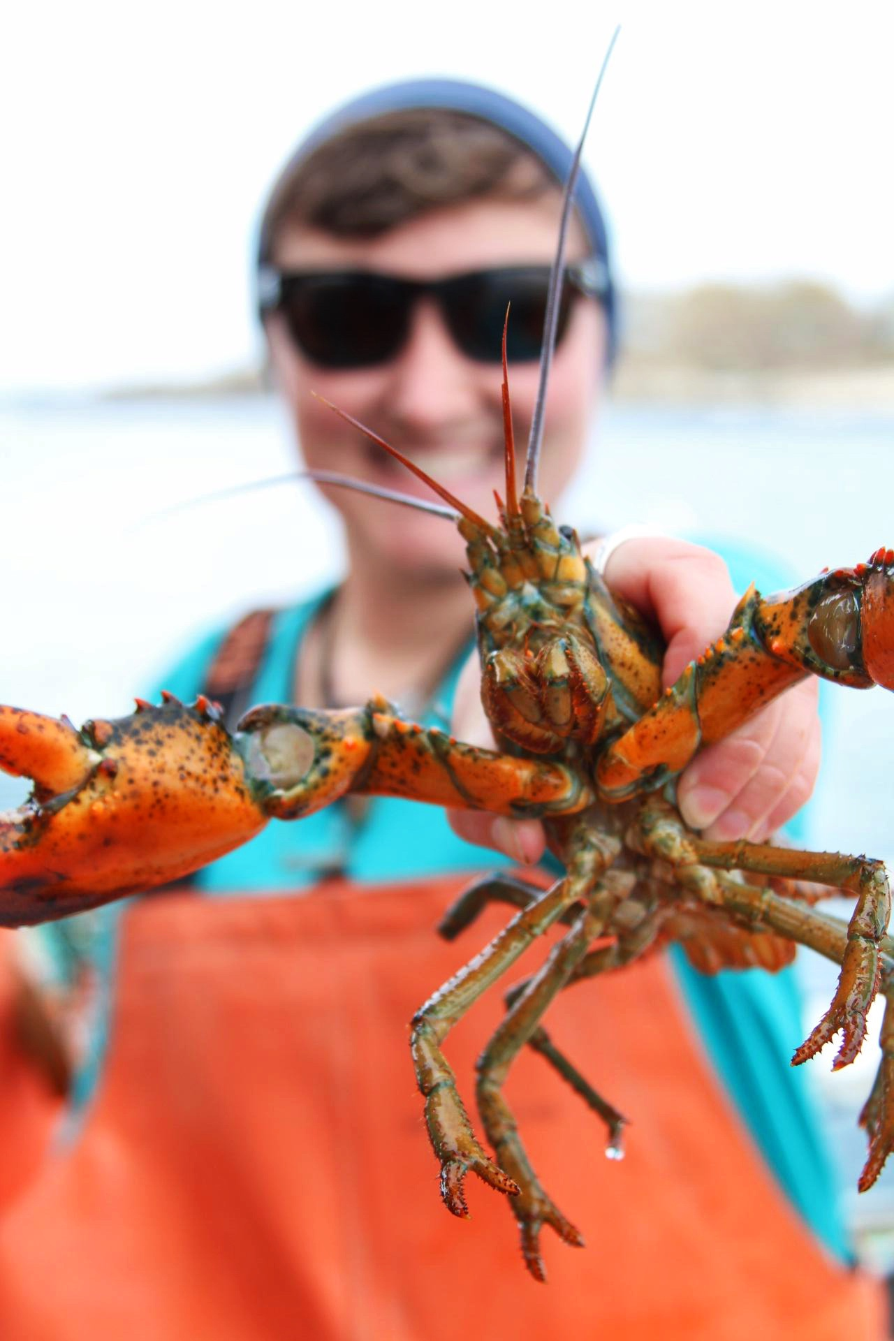 Lucky Catch Cruises Lobster