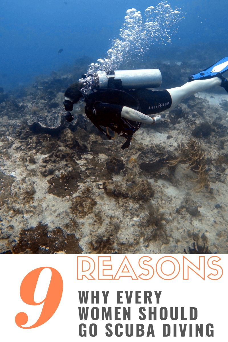 Every women needs to dive in and get her PADI Open Water Certification. Women can do anything, so start scuba diving! #scuba #scubadiving #underwater #PADI #padiopenwater #girlswhoscuba