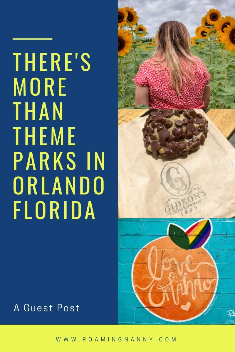 Orlando Florida is known for theme parks, but there's more to do there if you take a closer look. #orlando #visitorlando #florida #orlandoflorida #visitflorida