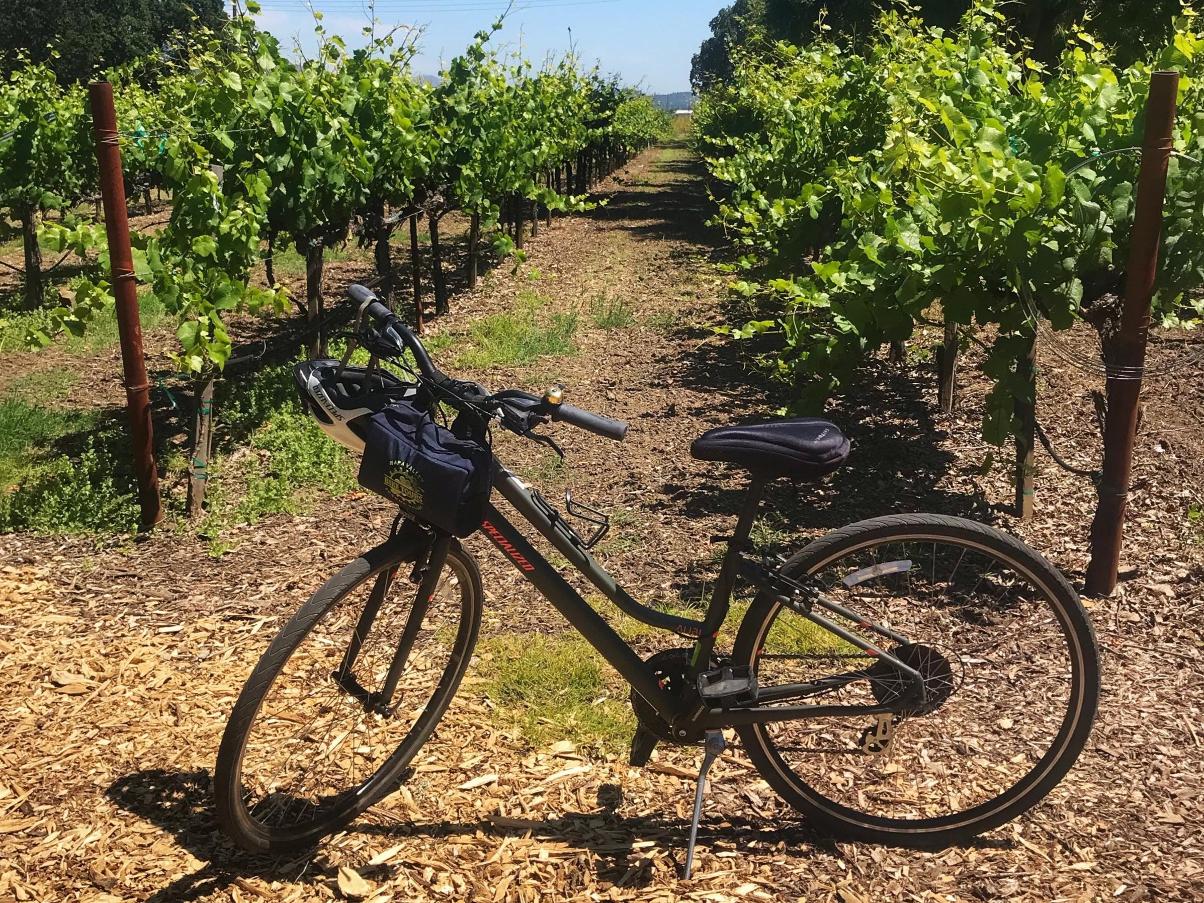 bike in napa