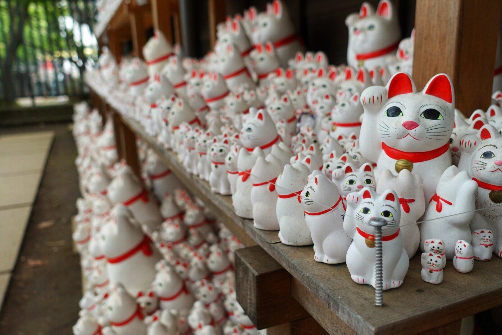 cat temple tokyo
