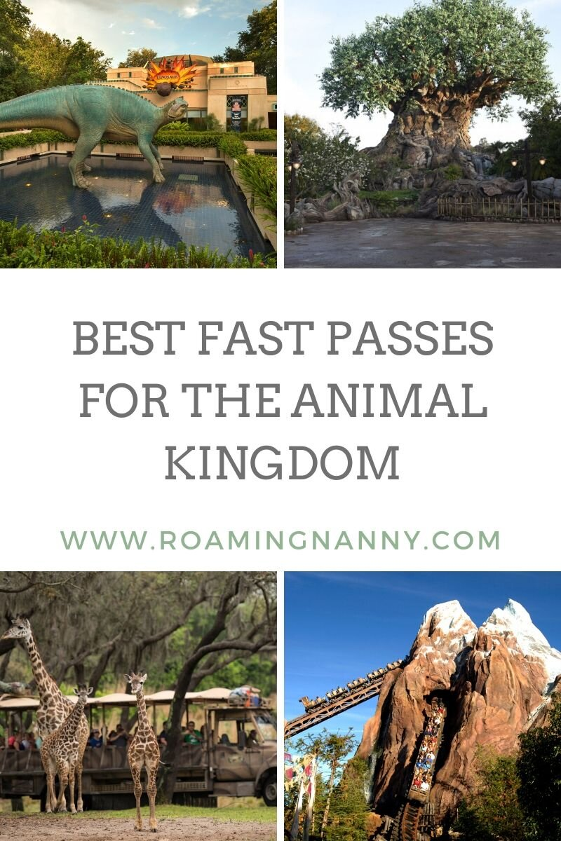 Recommendations for the best fastpasses at Disney's Animal Kingdom #fastpass #animalkingdom #waltdisneyworld #wdw #disneysanimalkingdom