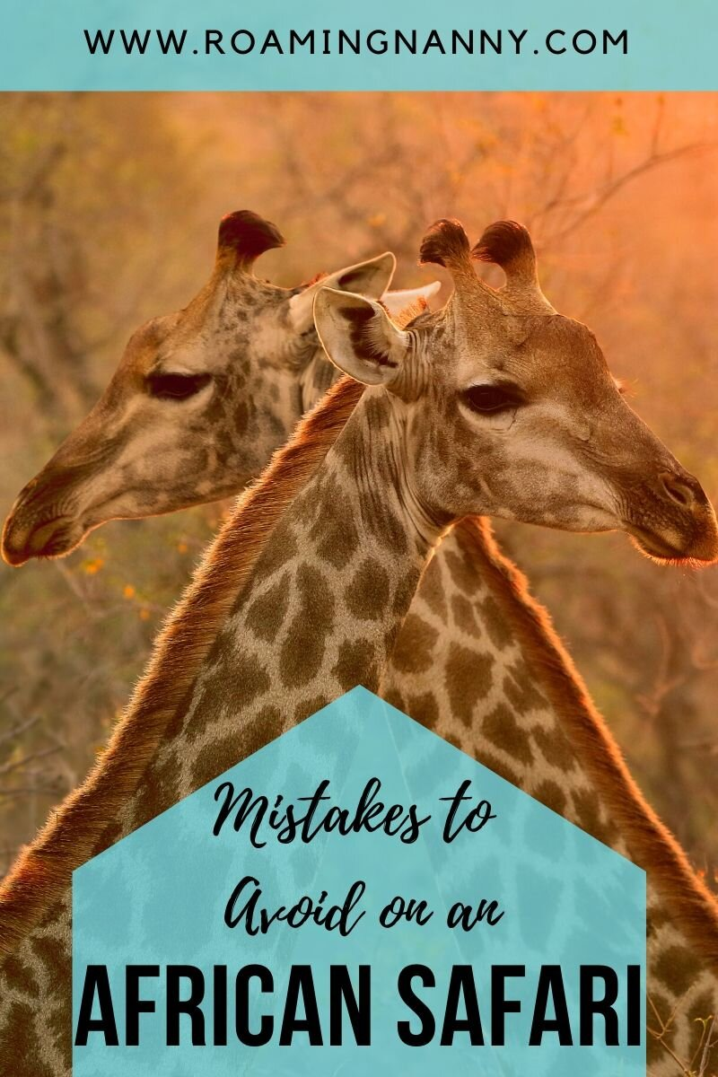 Avoiding these simple mistakes on your African safari will ensure you have the trip of a lifetime. #africansafari #africananimals #adventuretravel #safari