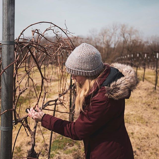 We're starting to see a bit of bud swell in the vineyard and couldn't be more excited for the coming growing season. Stay tuned for #budbreak! ⠀⠀⠀⠀⠀⠀⠀⠀⠀ 📸 credit: @dear.native.grapes ⠀⠀⠀⠀⠀⠀⠀⠀⠀ P.S. Are you following @dear.native.grapes yet? Go show them some love. ⠀⠀⠀⠀⠀⠀⠀⠀⠀ //#nativegrapes #missouri #vineyard #pastoral #nature #winery #tvmunson #grapes #vines #grapevines #🍇 #🍷 #wine #slowfood #instawine #winestagram #igkansascity #igkc #instakc #howwedokc #kcmo #feastgram #kansascity #americanwinerevolution #americanheritagegrapes #voiceoftheland #terravox #tastehistory
