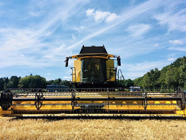 Suns out, combines out 🌞🌾👏This year hasn't been the easiest harvest for our Arable Manager, Charlotte, due to the unseasonably wet and unpredictable weather. However, things are looking up for the next few days so she's excited to get her combine on the move again🏎💨🏁. . . . #hughlowefarms #farmers #growers #farm#agriculture #knowyourfarmer #localproduce #buylocal #healthy #kent #freshproduce #instapic #instadaily #farmlife #countrysideliving #arable #wheat #skyfallvariety #harvest #2019 #farming #farmingphotos #combineharvester
