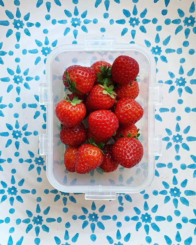 A healthy lunchbox snack🍓❤️💪Strawberries are a rich source of antioxidants, nutrients such vitamins C and K and fibre. They are naturally sweet and make a delicious, healthy addition to your kid's school lunchbox! #backtoschool #healthysnack #lunchboxideas #healthykids #babyberries . . . . #hughlowefarms #farmers #growers #farm#agriculture #knowyourfarmer #localproduce #buylocal #healthy #kent #freshproduce #instapic #instadaily #farmlife #countrysideliving #kids #strawberries #berries #raspberries #premium #blackberries #health #nutrition #school #lunchbox