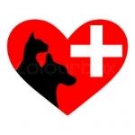 emergency vet care.jpg