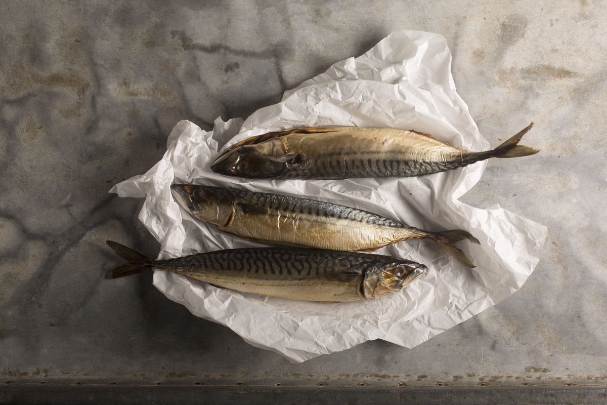 JOP-Holland-Fish.jpg