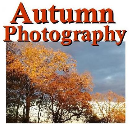 autumnphotography.jpg