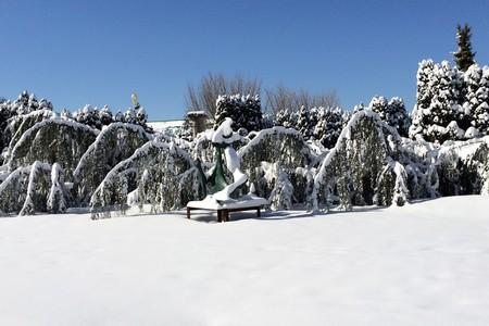 gfs-winter.jpg