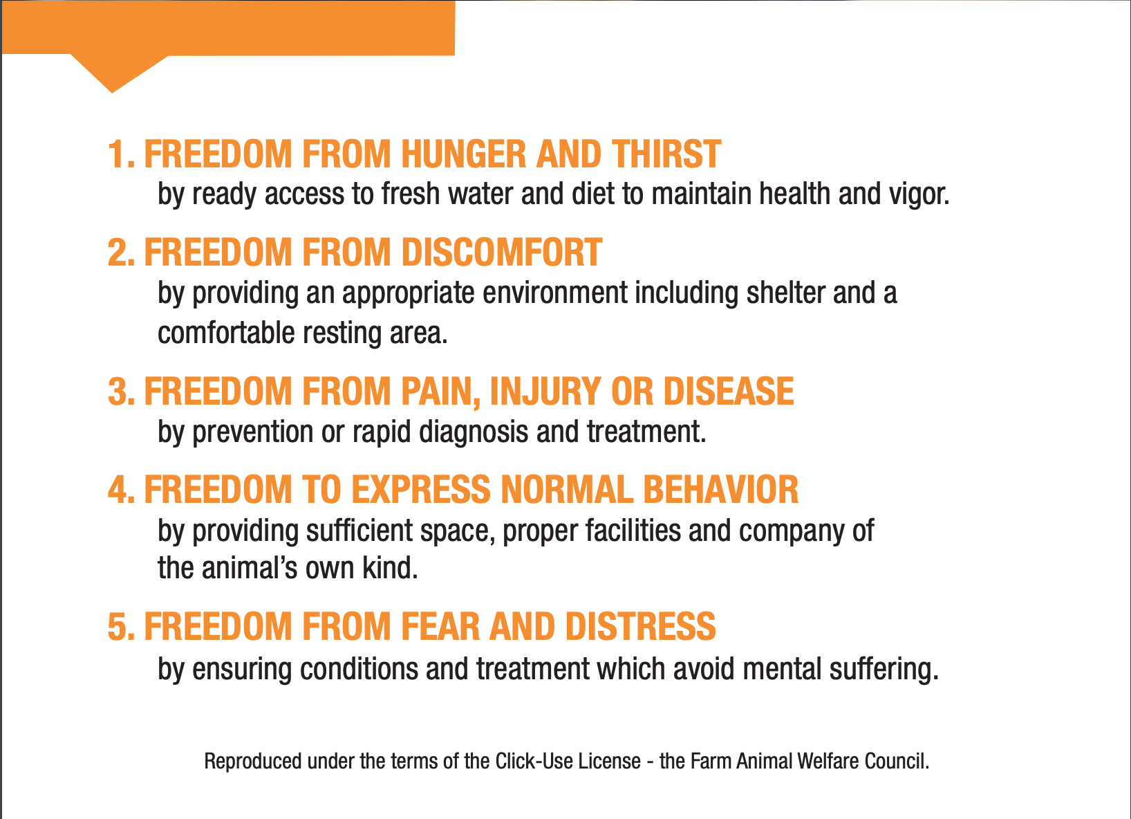 These are the 5 freedoms that must be met for a situation to be considered humane in animal welfare. Screenshot from the ASPCA, sourced from the Farm Animal Welfare Council.