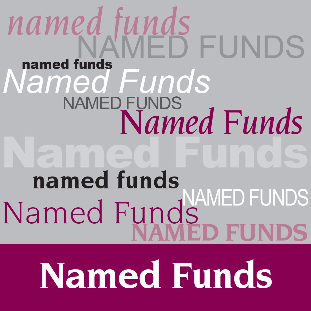 individualsectionphotos_NAMEDFUNDS.jpg