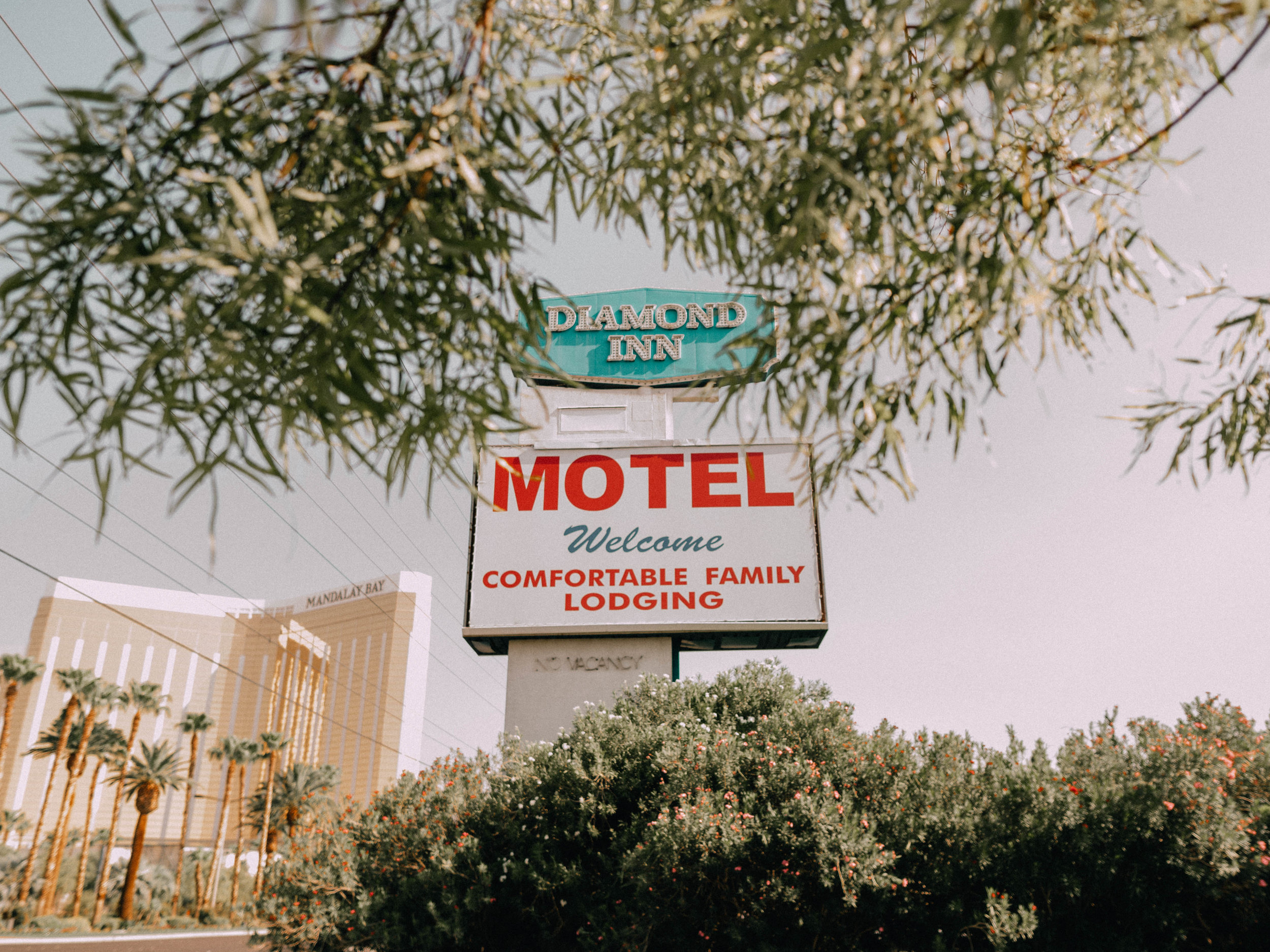desert-dwelling-pink-elephant-motel-3.jpg
