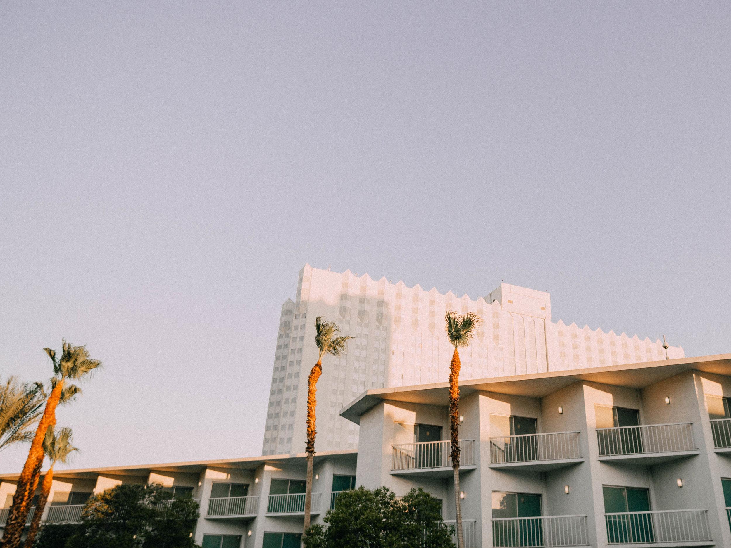 desert-dwelling-tropicana-11.jpg