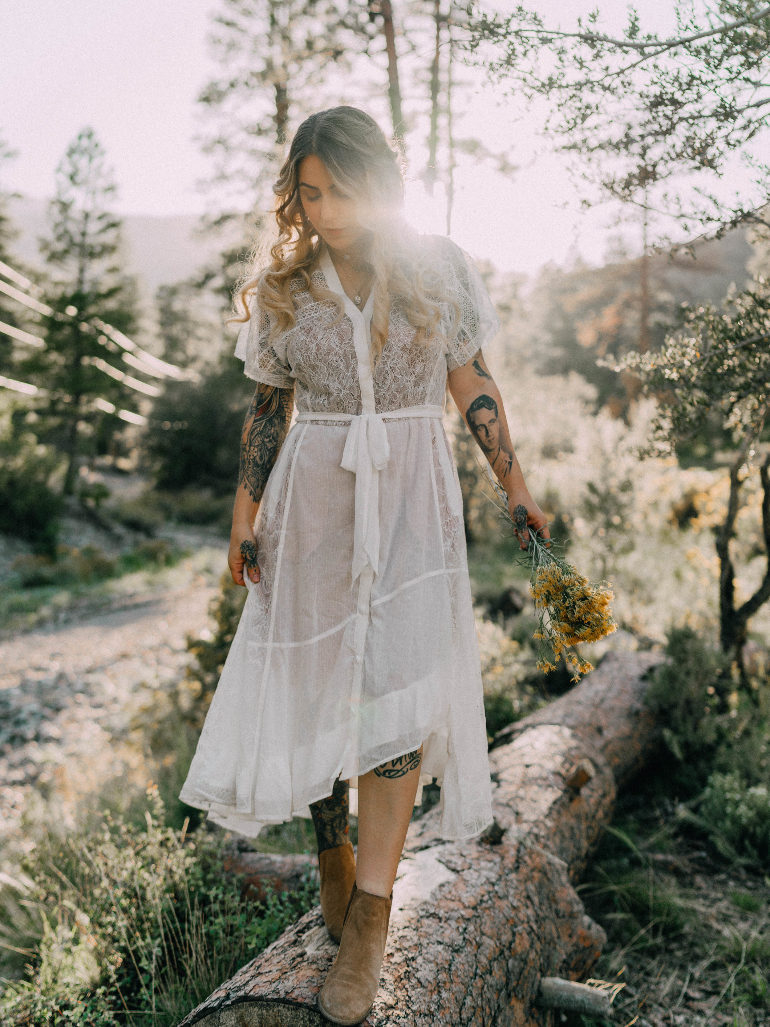 desertdwelling-wildflower-16