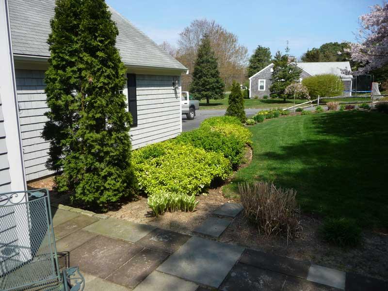 Walkway-Garden-Before1.jpg