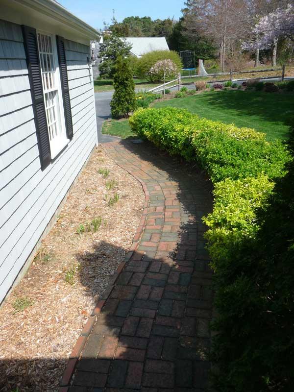 Walkway-Garden-Before2.jpg