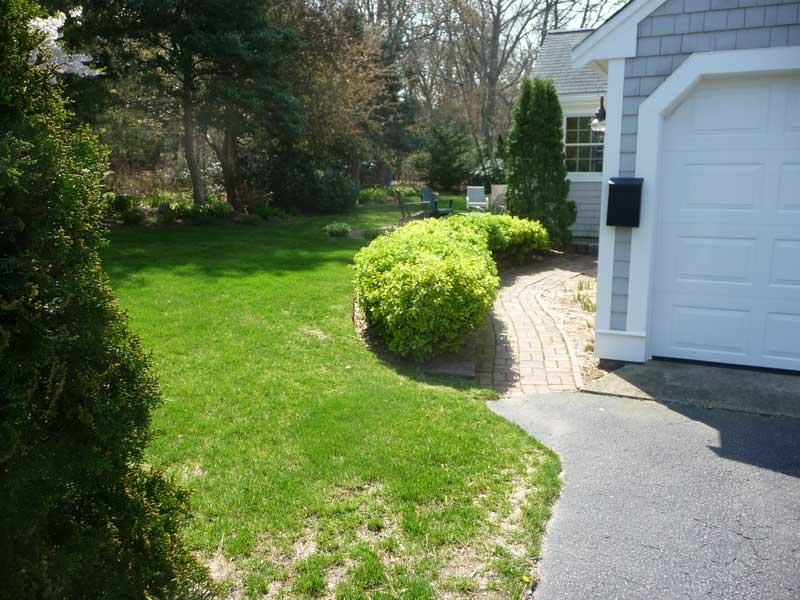 Walkway-Garden-Before3.jpg