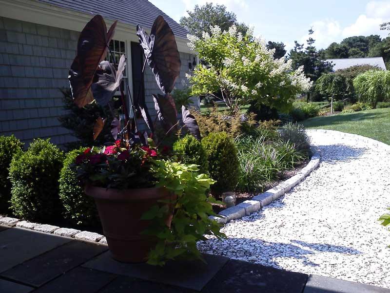 Walkway-Garden-After2.jpg