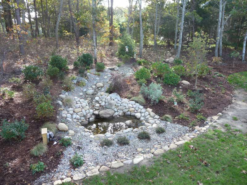 Woodland-Water-Feature_After7.jpg